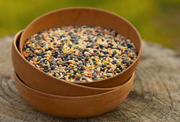 Lentils variety mixture