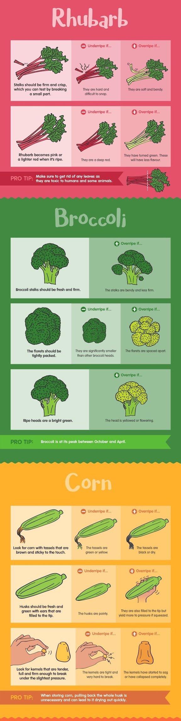 How to choose rhubarb, broccoli, and corn