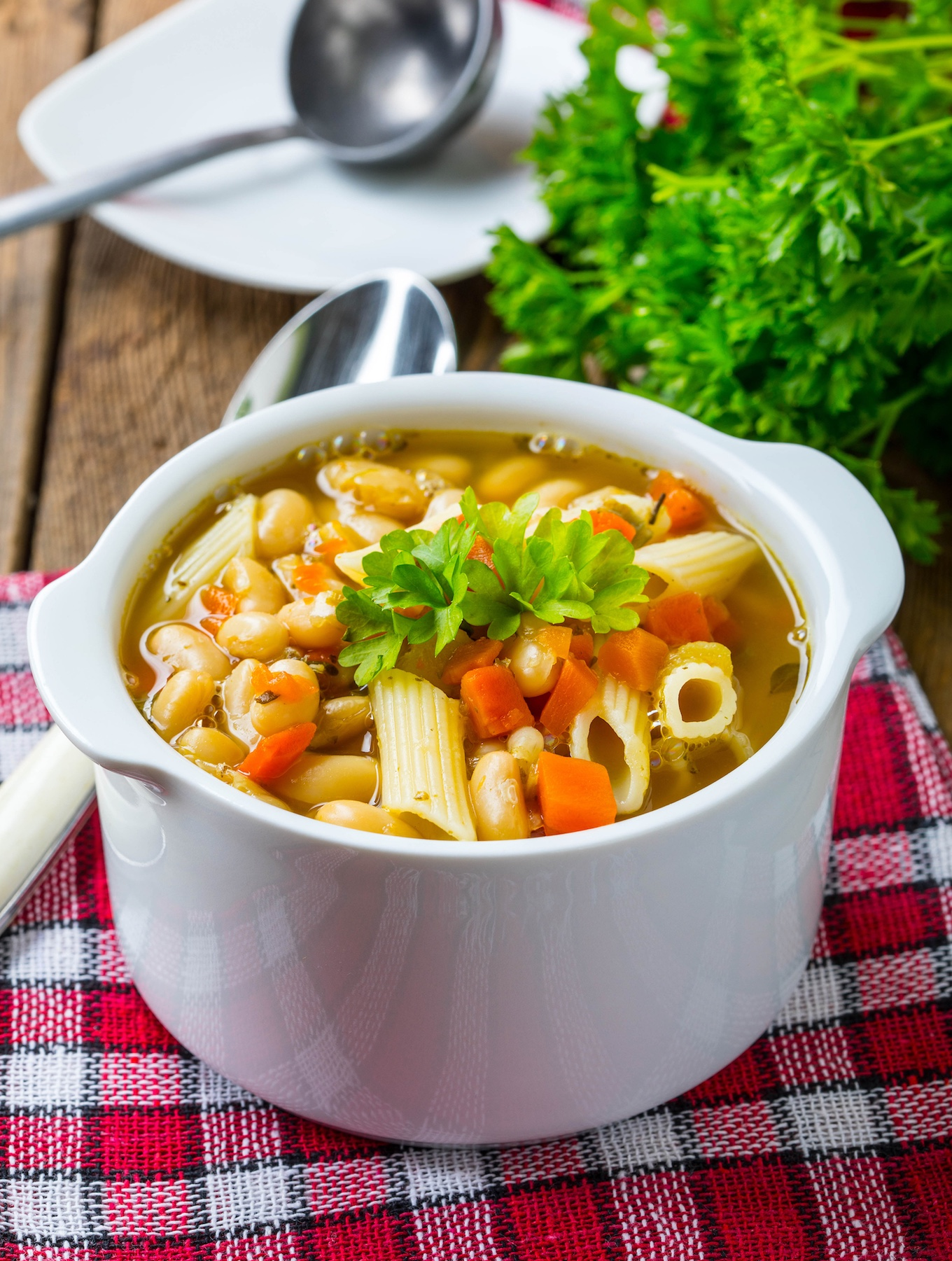 Italian Pasta and Bean Soup With Penne