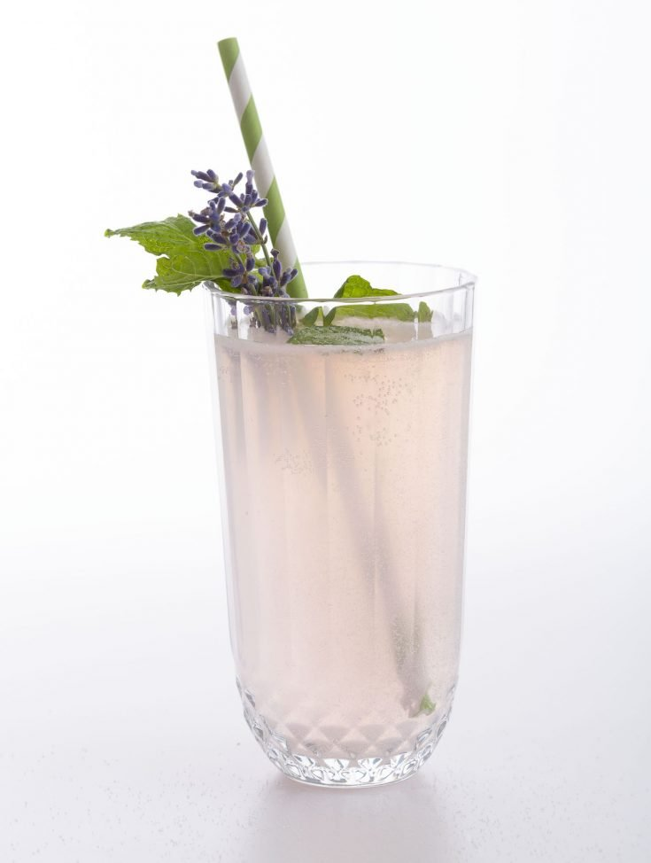 Gin and Lavender Cocktail from Gin Austen