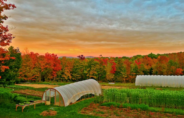 Soul fire farm, grafton NY sunrise