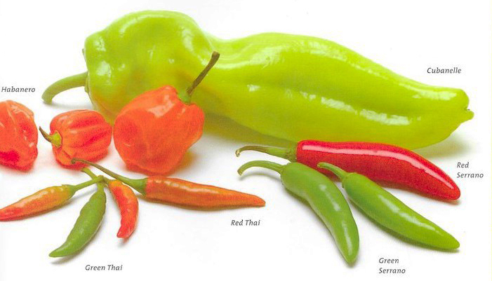 Common chile pepper varieties