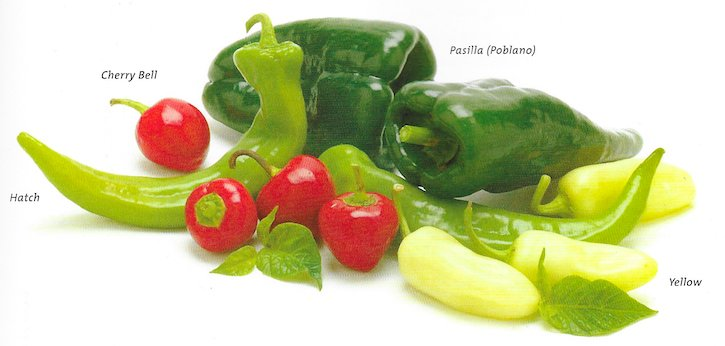 hot chile varieties