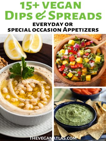 Vegan Dips & Spreads pin1 sm