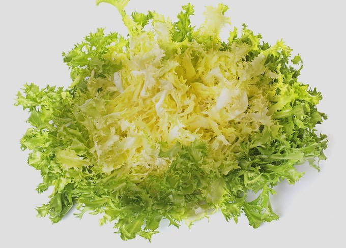 Frisee - a variety of curly endive