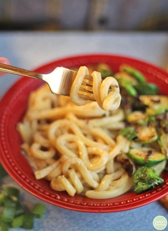 vegan udon noodles on a fork