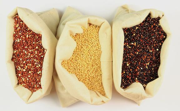 Quinoa varieties