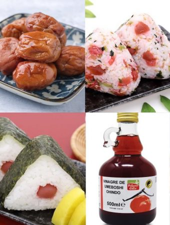 Guide to Umeboshi