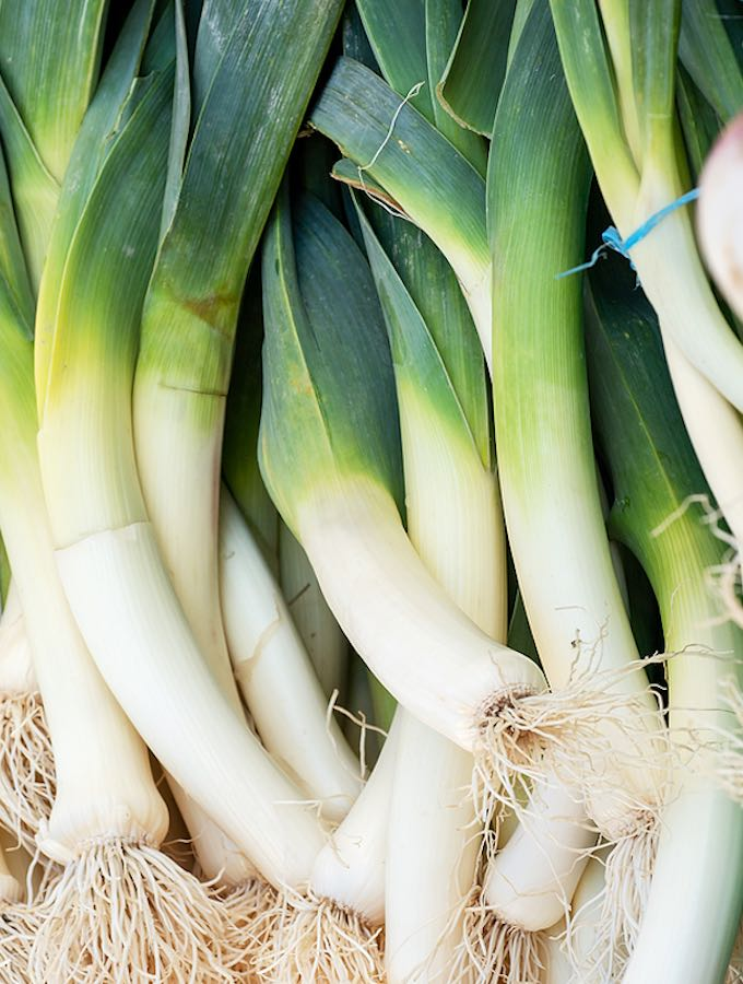 Bunch Leeks