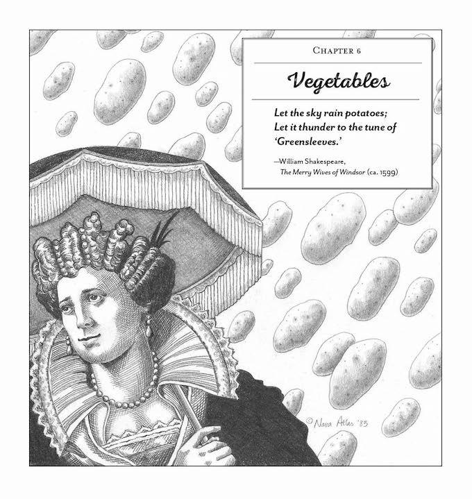 Vegetariana by Nava Atlas - let the sky rain potatoes