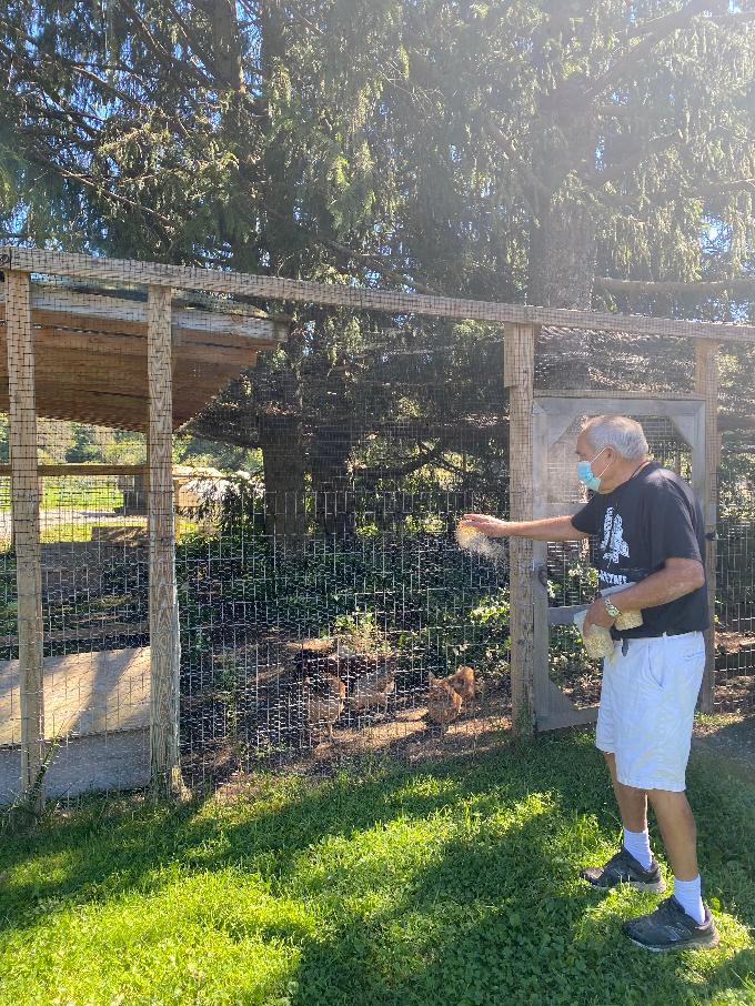 Bill Crain at the Safe Haven farm sanctuary